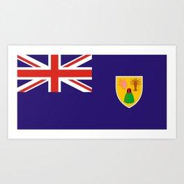 Turks and Caicos Island flag Art Print