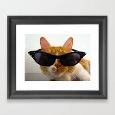 Cool Cat Wearing Sunglasses  Framed Art Print