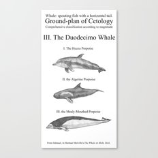 III. The Duodecimo Whale Canvas Print
