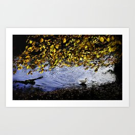 Lonely duck in forests Art Print