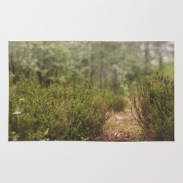 The Blueberry Trail Rug
