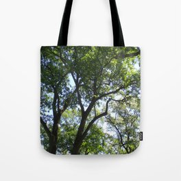 Graduation 2, Wellesley College Tote Bag