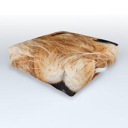 Lion Portrait Photograph Outdoor Floor Cushion
