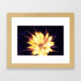 Geometric Firework 23 Framed Art Print