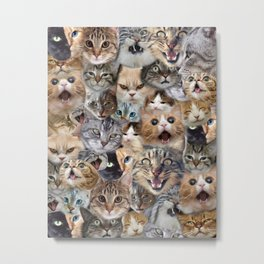 Many expressions of Cats Metal Print
