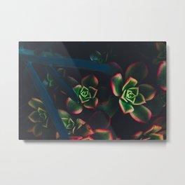 The Succulent Garden 1 Metal Print