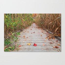 Autumn Marsh Boardwalk Canvas Print