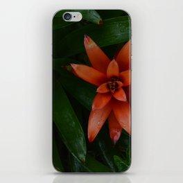 Tropical Flowers iPhone Skin