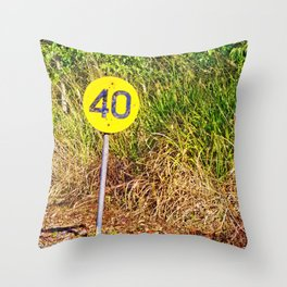 Your speed is 40 Throw Pillow