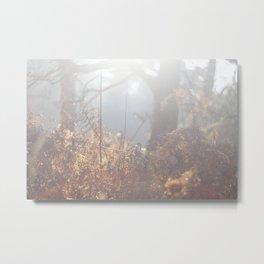 Fairies Metal Print