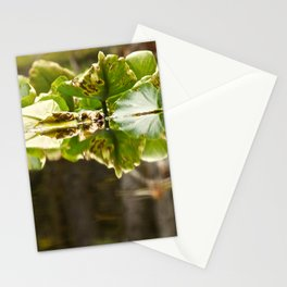 Lily Pad Photography Print Stationery Cards