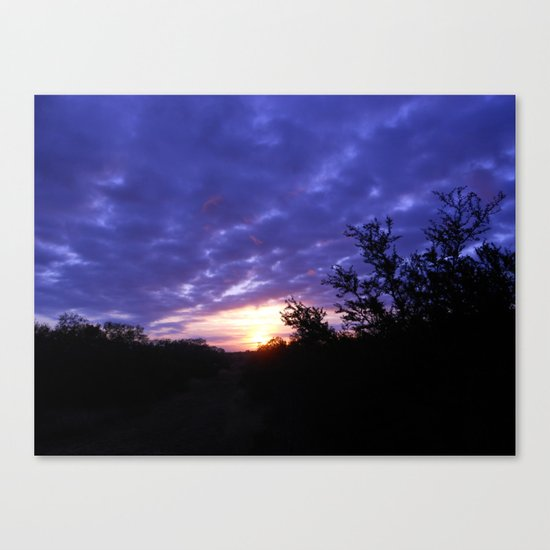 The Morning Glory  Canvas Print
