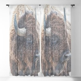 Bison the Mighty Beast Sheer Curtain