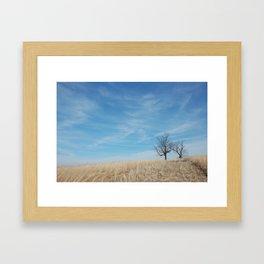 Kentucky Field Framed Art Print
