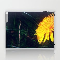 Daffodil  Laptop & iPad Skin