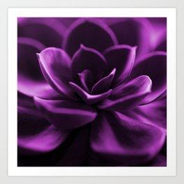 Succulent Plant In Violet Color #decor #society6 #homedecor Art Print
