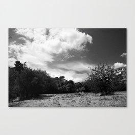 Sky Blanket Canvas Print
