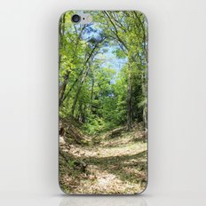 Towering forest iPhone & iPod Skin