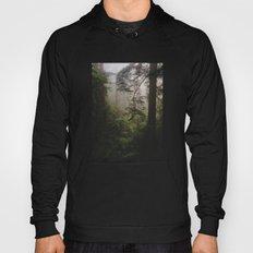 Foggy Forest Hoody