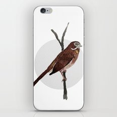 Messenger 002 iPhone & iPod Skin