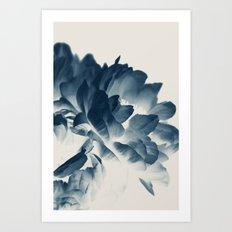 Blue Paeonia #3 Art Print
