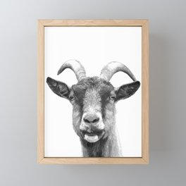 Black and White Goat Framed Mini Art Print