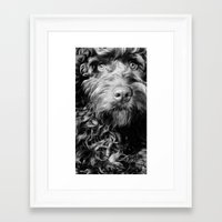 harry Framed Art Prints featuring HARRY by PRE Media