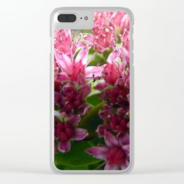 Sedum Flowers and the Ant Clear iPhone Case