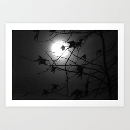 Leaves & Moon Art Print