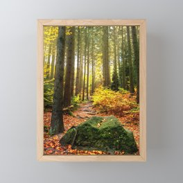 Path Through The Trees - Landscape Nature Photography Framed Mini Art Print