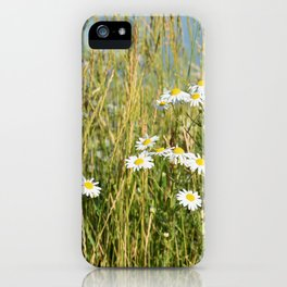 Wildflowers along the lake iPhone Case