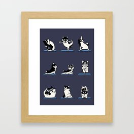 Husky Yoga Framed Art Print