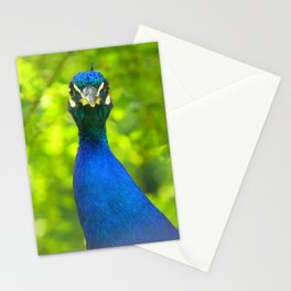 Peacock is watching you Stationery Cards