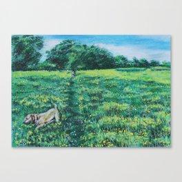 Walkies in the meadow Canvas Print