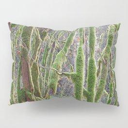 YOUNG RAINFOREST VINE MAPLES Pillow Sham