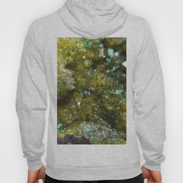 Geode Abstract Citrine Hoody