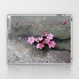 Tiny thing Laptop & iPad Skin