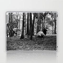 Elk Laying Down in Woods Laptop & iPad Skin