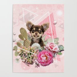 Eclectic Geometrical Chihuahua Poster