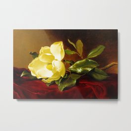A Yellow Magnolia on Red Velvet by Martin Johnson Head Metal Print