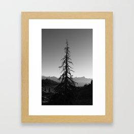 Black Tree in the Mountains Framed Art Print