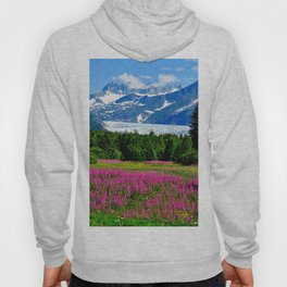 Alaska USA Nature Mountains Lupinus landscape photography Trees Shrubs mountain Scenery Bush Hoody