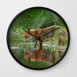 Fox Reflected in Pond Wall Clock
