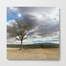 A Tree Stands Alone Metal Print