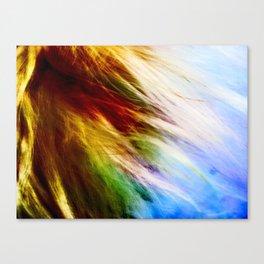 Toodles Goldenhair Canvas Print