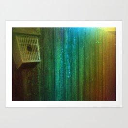 Damaged Disposable Camera Film - Backyard Art Print
