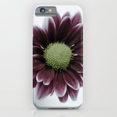 Drops on a Daisy iPhone 6s Slim Case