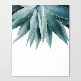 Agave fringe Canvas Print