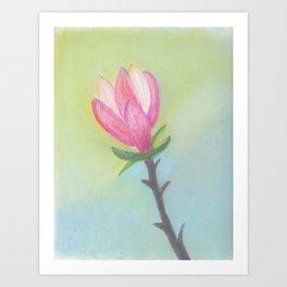 Bright Magnolia Bloom Art Print