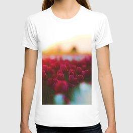 Spring Tulip Fields T-shirt